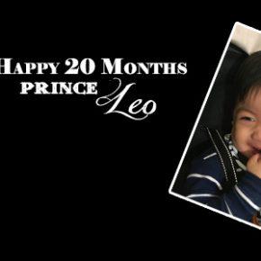 Leo20MonthsBanner