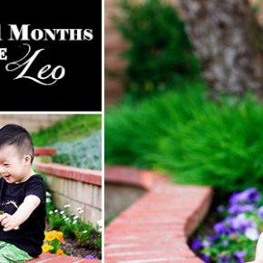 Leo21MonthsBanner